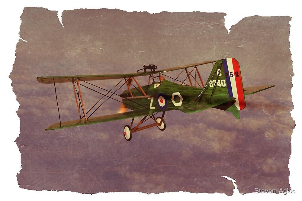 Flying High by Steven  Agius