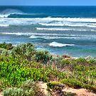 Coastal Bliss by Adam Burke