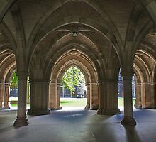 Glasgow University Cloisters by David Alexander Elder