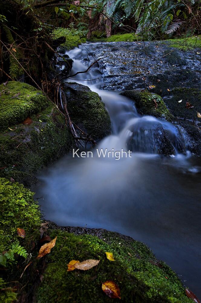 Whataroa ~ stream drift by Ken Wright