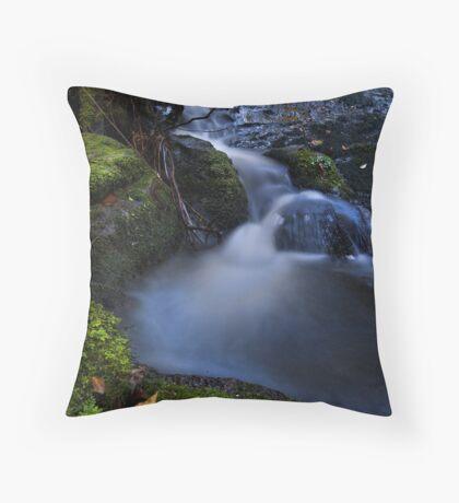 Whataroa ~ stream drift Throw Pillow
