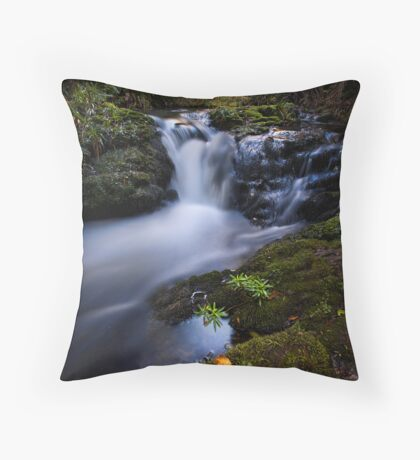 Whataroa Stream Throw Pillow