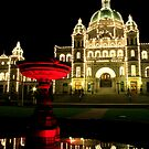 Victoria - The Legislature Reflected by rsangsterkelly