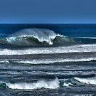 Groomed by the Wind by Adam Burke