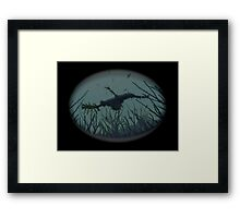 BORNE OF BLACK CORAL Framed Print