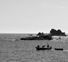 Lizard Point. by Steve winters Photography