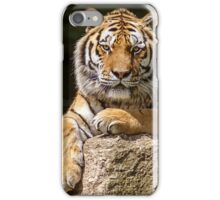 SiberianTiger iPhone Case/Skin