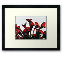 Glass flowers Framed Print