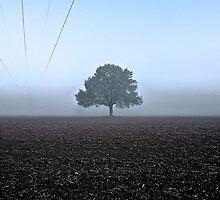 Alone? by Noze