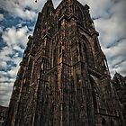 The Cathedral of Strasbourg by Noze