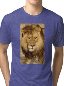 The stare down Tri-blend T-Shirt