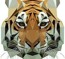Tiger by edwardmhz