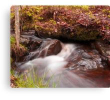 Free flowing Canvas Print