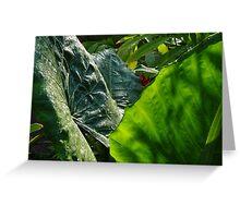 Green Plants - Plantas Verdes Greeting Card