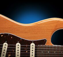 Fender Stratocaster Curves by koping