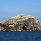 The Bass Rock, Scotland by Ian Coyle