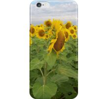 Chattering Flowers iPhone Case/Skin