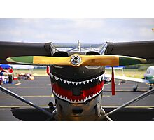 Vintage Nose Art WWII Airplane (L5 SENTINEL) Photographic Print