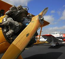 WWII Airplane - PT-17 STEARMAN by Bill Hurst