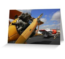 WWII Airplane - PT-17 STEARMAN Greeting Card