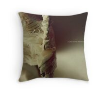 LAURA SHAFER PHOTOGRAPHY #511 Throw Pillow