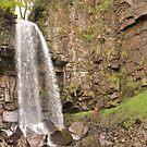 Melincourt Falls, Wales, UK by Bearfoote
