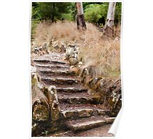 wild stairs Poster