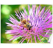 Honey Bee - Bokeh Poster