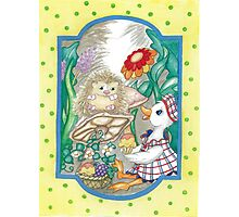 DUCK AND HEDGEHOG Photographic Print
