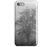 Mountain Ash in the Mist iPhone Case/Skin