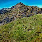 Masca, Los Gigantes, Tenerife by Thomas Tolkien