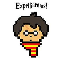 Pixel Potter Photographic Print