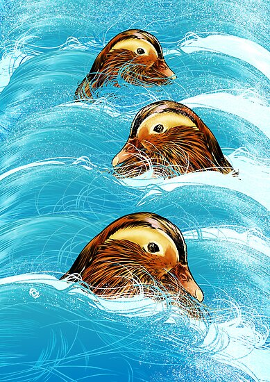 Ducks in a Stream by James Fosdike