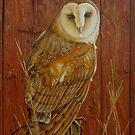Barn Owl by Lana Wynne