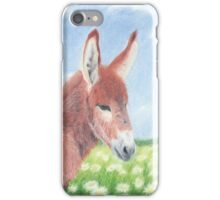 Field of Daisies iPhone Case/Skin