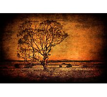 Outback Country Photographic Print