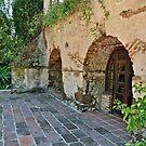 The Old Mill. El Molino Viejo, San Marino, Ca. by philw