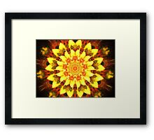 Yellow Poinsettia Framed Print