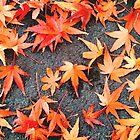 Orange And Yellow Splash Of Autumn by kahoutek24