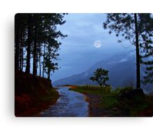 An Ode to a Moonlit  Night! (please see description) Canvas Print