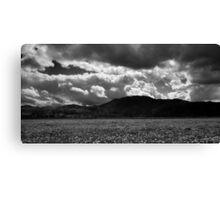 Ljubljana marshland in Black and White Canvas Print