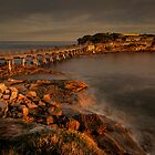 Bear Island at La Perouse at sunset by KeithMcInnes
