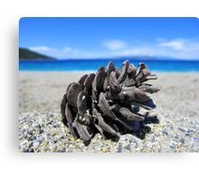Pine Cone - Beach Surrounded by Pine Trees Canvas Print