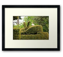 up all night doing me topiary Framed Print