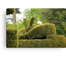 up all night doing me topiary Canvas Print