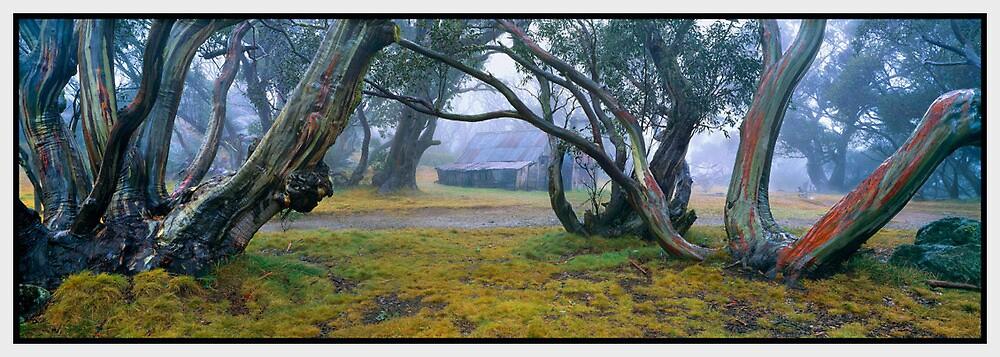 Solitude, Wallace Hut, Falls Creek VIC by Chris Munn
