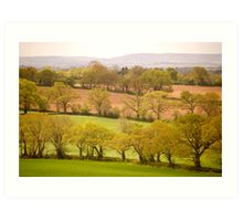 East Devon Rural ...43 Art Print
