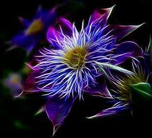 Glowing Flowers by RaRyke