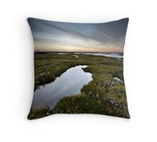 Salt Marsh Sunset Throw Pillow