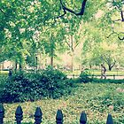 Madison Square Park Spring - New York by SylviaS